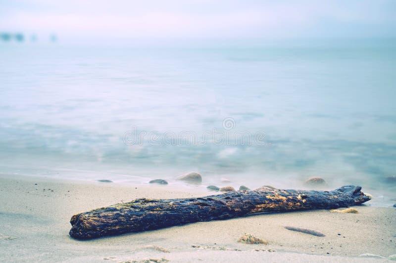 Spiaggia pietrosa con il tronco rotto Misteri dell'alba immagine stock