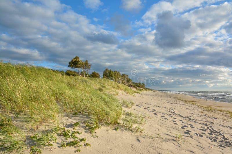 Spiaggia pittoresca enorme sul Mar Baltico fotografie stock libere da diritti