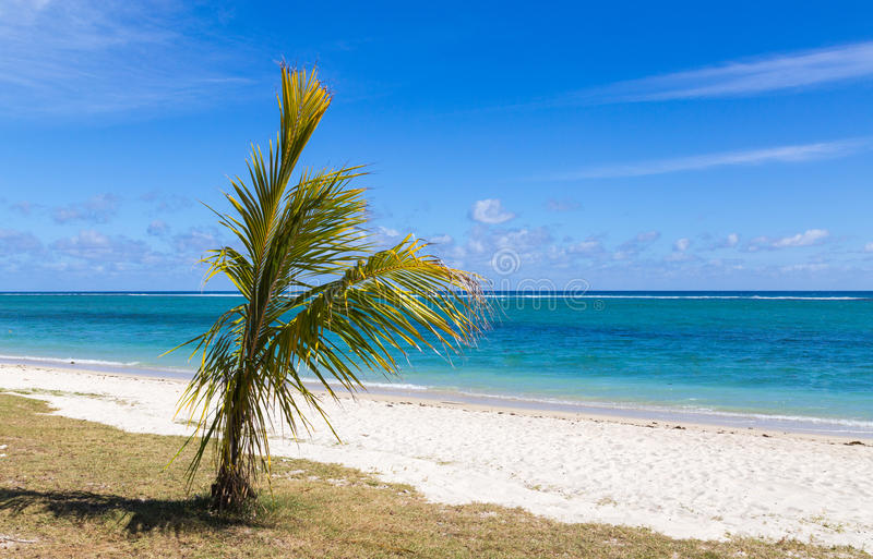 Spiaggia pubblica dell'en Flac Mauritius di Flic che trascurano il mare immagine stock