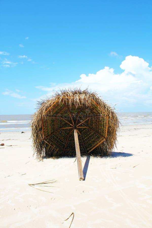 Spiaggia rustica di paradiso nel Brasile fotografie stock libere da diritti
