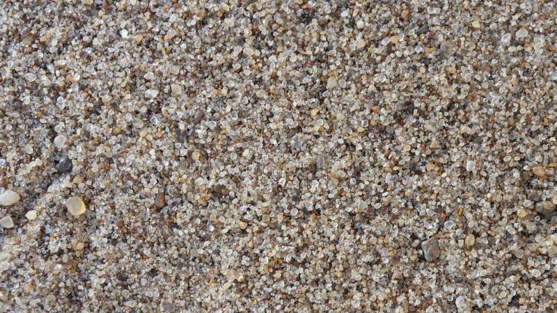 Download Spiaggia Sabbiosa Ad Un Aumento Fotografia Stock - Immagine di usuale, quando: 117978256