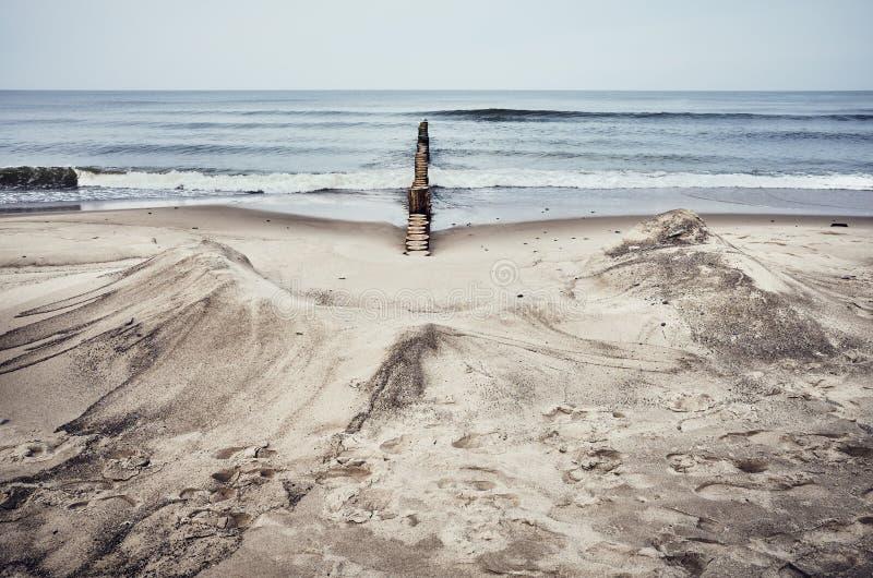 Spiaggia sabbiosa con l'inguine di legno fotografia stock libera da diritti