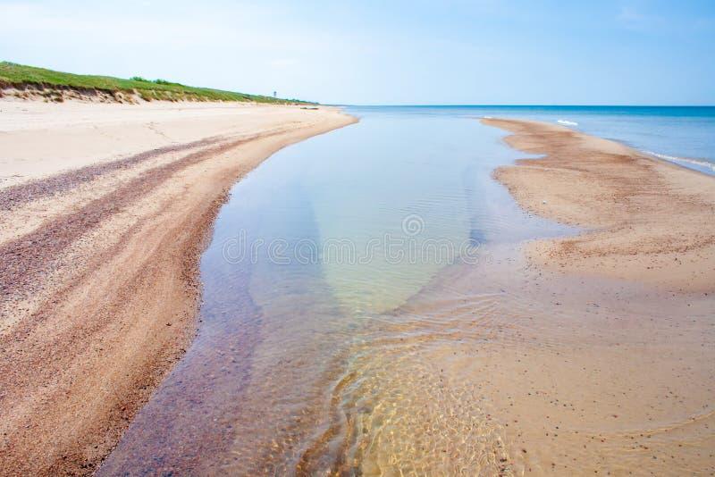 Spiaggia sabbiosa con le dune, Mar Baltico immagine stock libera da diritti