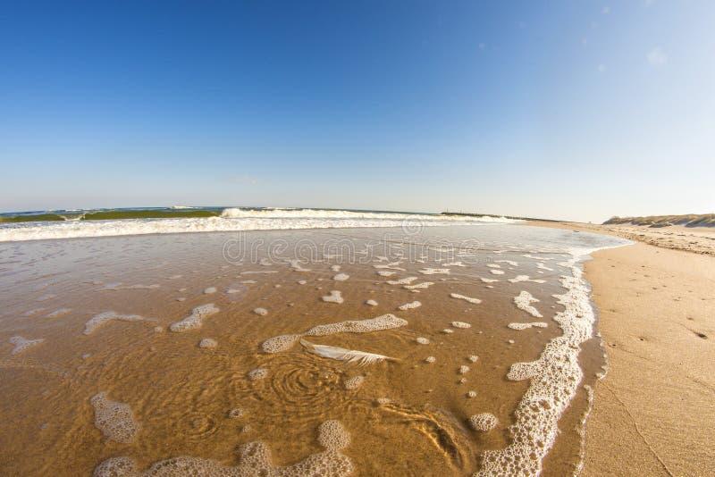 Spiaggia solitaria del Mar Baltico immagine stock libera da diritti
