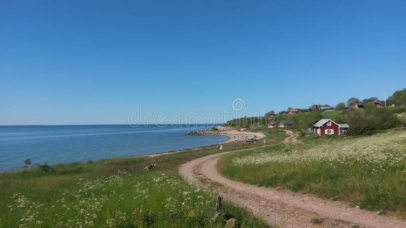 Spiaggia su Öland, Svezia, Mar Baltico fotografia stock