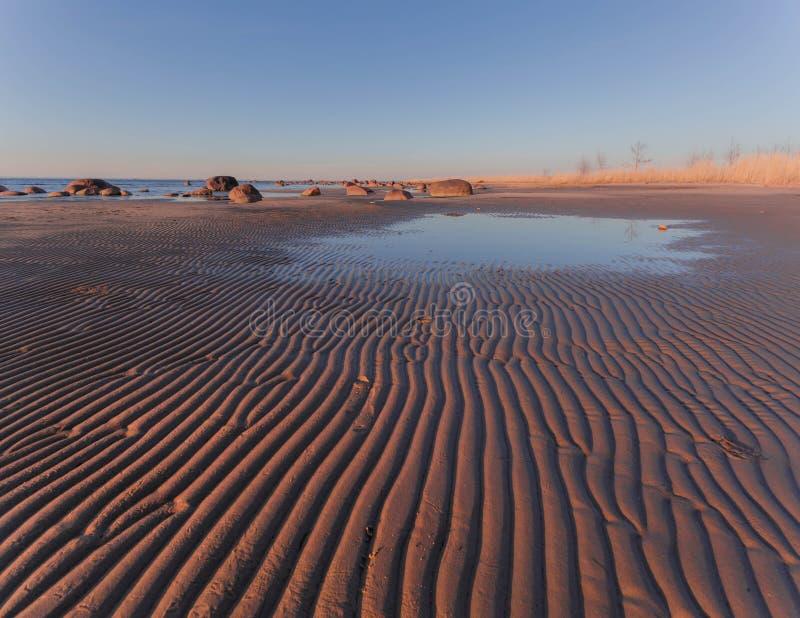 Spiaggia sul golfo di Finlandia fotografia stock