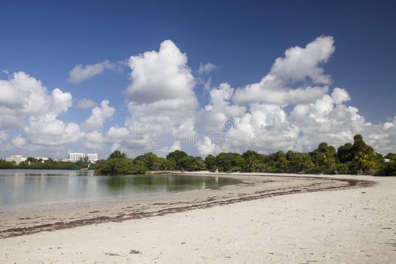 Spiaggia sulla baia di Biscayne immagine stock