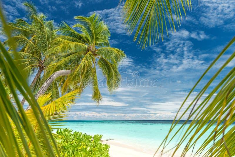 Spiaggia sulle Maldive immagini stock
