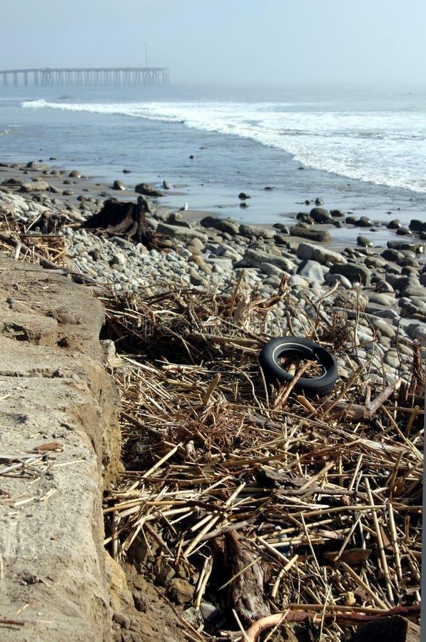 Spiaggia Tempesta-Devastata Immagini Stock Libere da Diritti