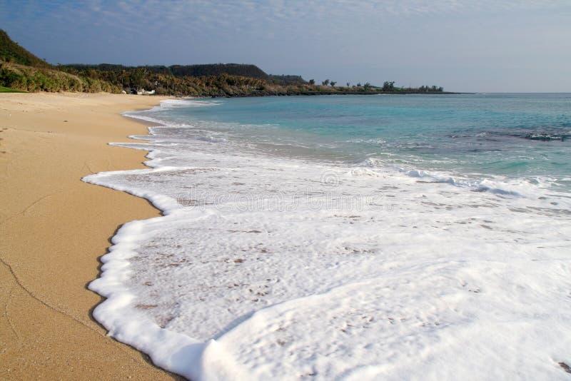 Download Spiaggia tropicale fotografia stock. Immagine di oceano - 3894166