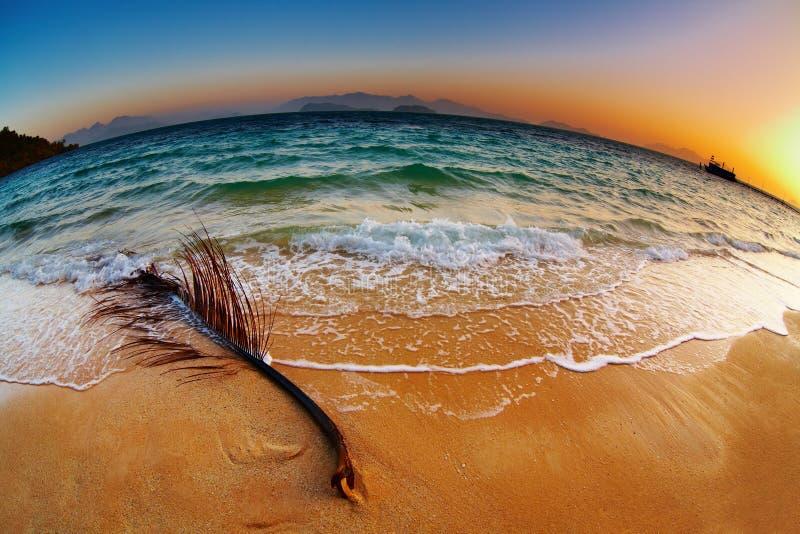 Spiaggia tropicale ad alba, Tailandia fotografia stock