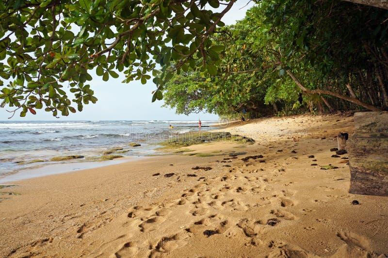 Spiaggia tropicale in America Centrale fotografia stock