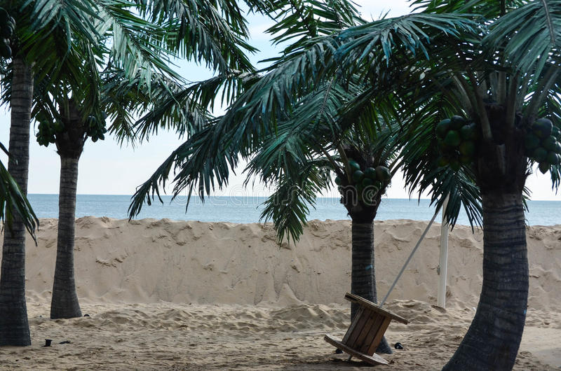 Spiaggia tropicale con le palme immagini stock libere da diritti