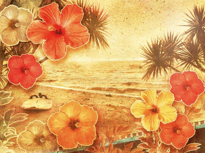 Spiaggia tropicale dell'annata immagine stock