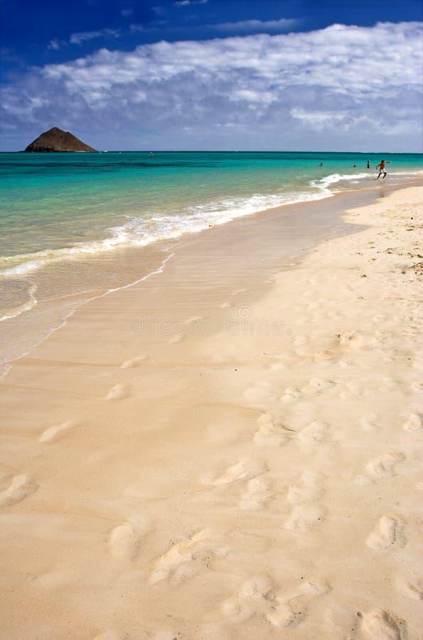 Spiaggia tropicale dell'icona fotografia stock libera da diritti
