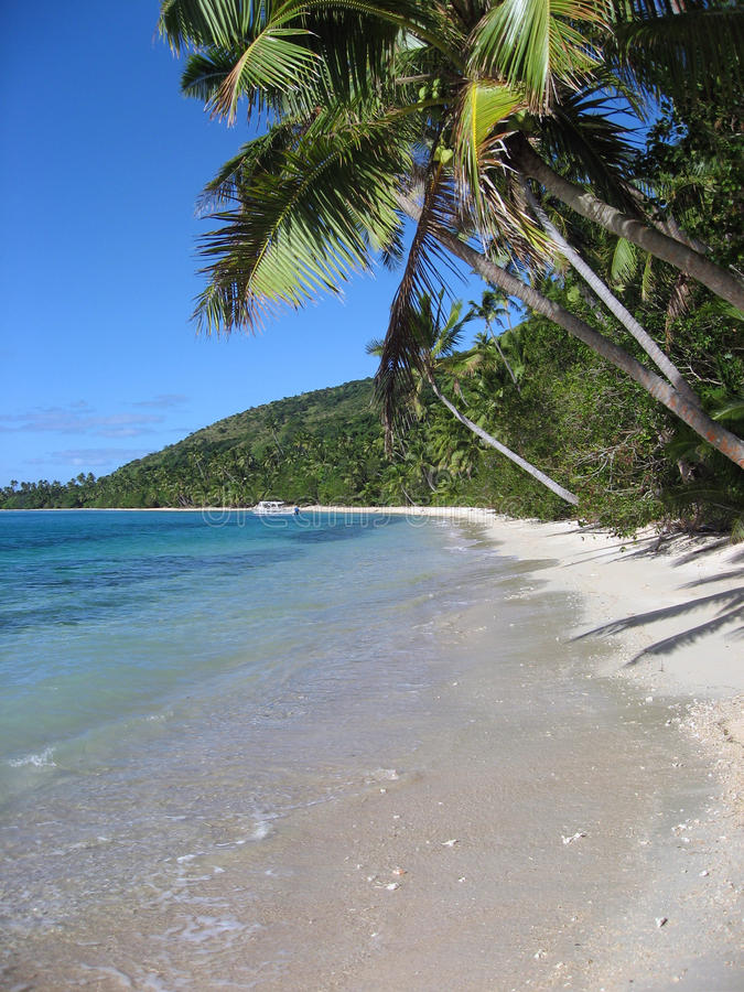 Spiaggia tropicale dell'isola del fijian, verticale fotografie stock
