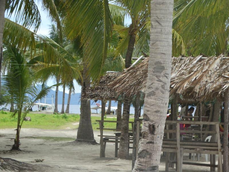 Spiaggia tropicale dell'isola di paradiso, Coron, Filippine fotografia stock