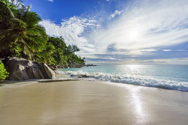 Spiaggia tropicale di paradiso con le rocce, le palme e il wate del turchese immagini stock