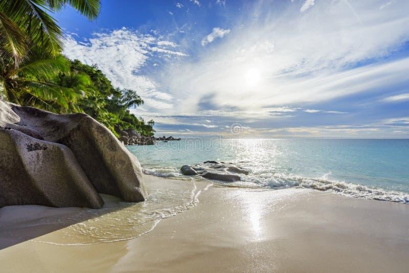 Spiaggia tropicale di paradiso con le rocce, le palme e il wate del turchese immagine stock libera da diritti