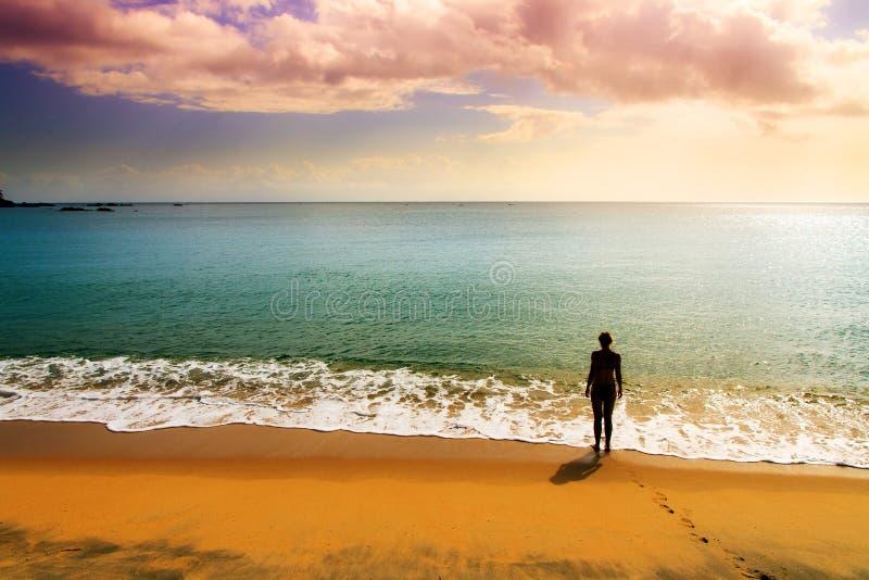 Spiaggia tropicale di tramonto fotografia stock libera da diritti