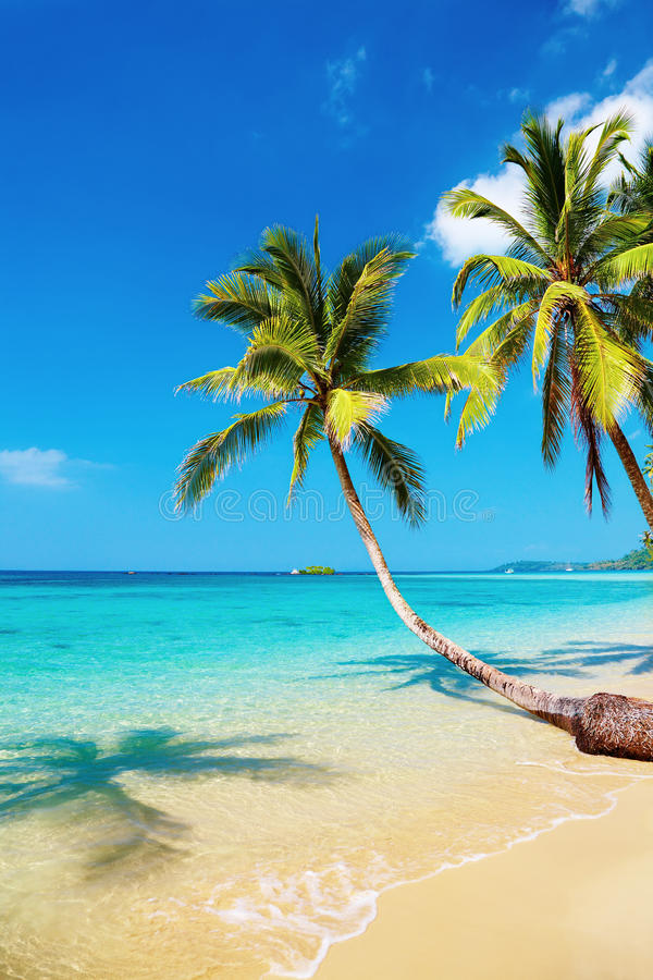 Spiaggia tropicale, isola di Kood, Tailandia immagini stock