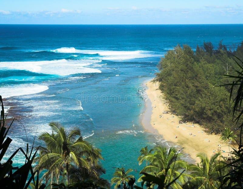 Spiaggia tropicale in Kauai, Hawai immagine stock libera da diritti
