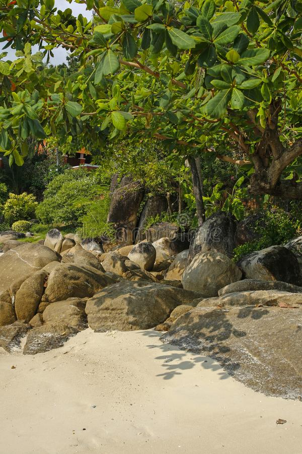 Spiaggia tropicale Lamai, Koh Samui, Tailandia fotografia stock libera da diritti