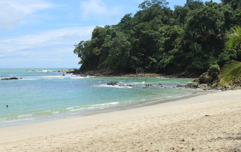 Spiaggia tropicale, Manuel Antonio, Costa Rica immagini stock libere da diritti