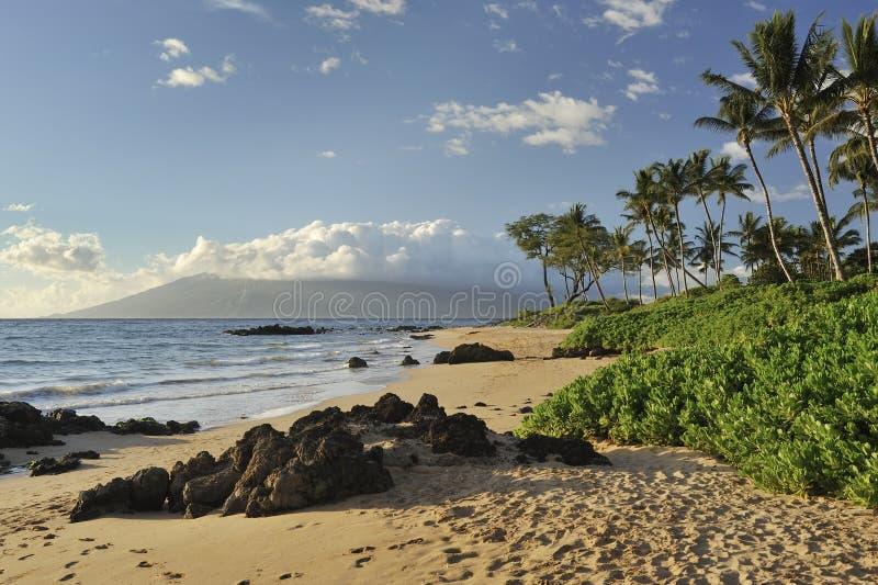 Spiaggia tropicale in Maui immagini stock libere da diritti