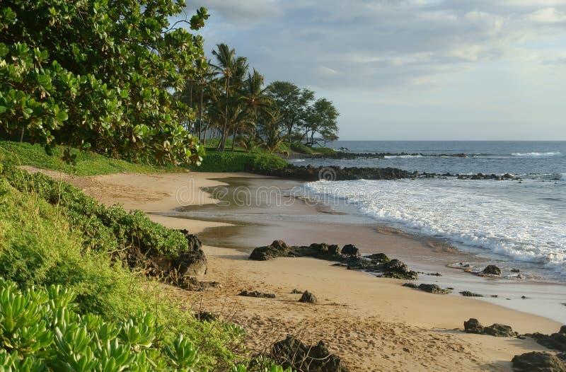 Spiaggia tropicale in Maui fotografia stock