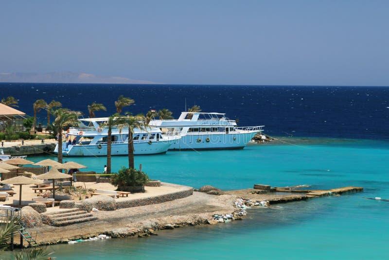 Spiaggia tropicale nell'Egitto   fotografia stock