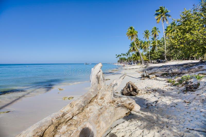Spiaggia tropicale sabbiosa bianca sul dominicano Rebublic fotografia stock