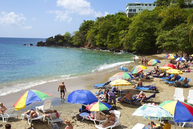 Spiaggia tropicale in St Vincent, granatine, caraibiche fotografia stock libera da diritti