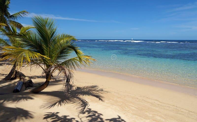 Spiaggia tropicale un il pezzo di paradiso fotografia stock libera da diritti