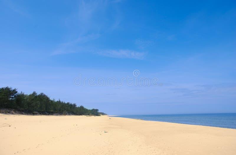 Spiaggia vuota larga di estate fotografia stock libera da diritti
