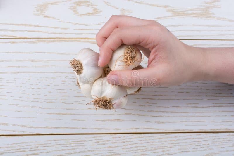 Spicchi d'aglio a disposizione in vista fotografie stock libere da diritti