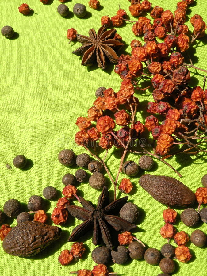Download Spice stock image. Image of seeds, ingredient, nature - 28919851