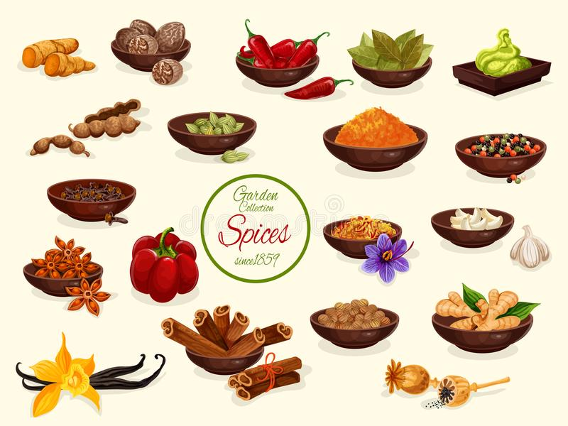 Spice, condiment and food seasoning poster vector illustration