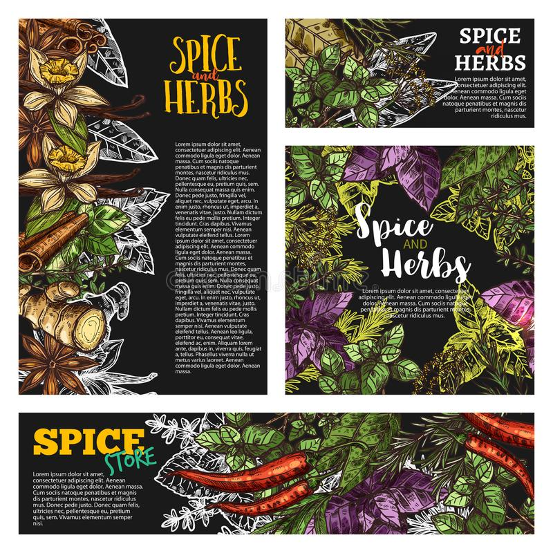 Spice and herb, food seasoning blackboard banner. Spice and herb blackboard banner set with natural food condiment chalk sketch. Chili pepper, mint and basil vector illustration