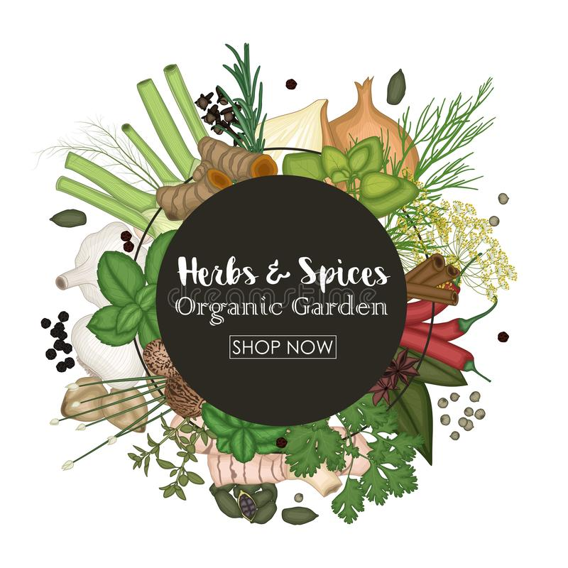 Spice and herb round frame background stock illustration