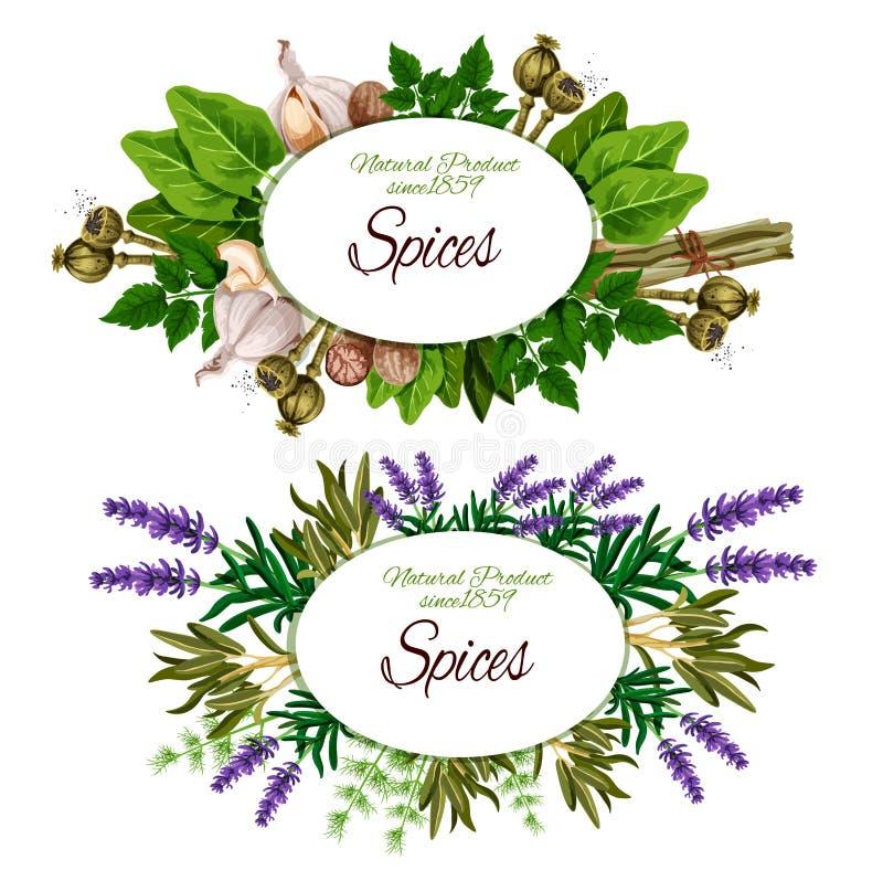 Vector spice, herbs and food seasoning stock illustration