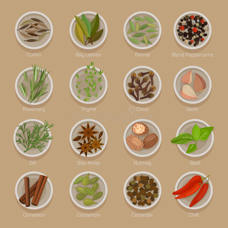 Spice or seasoning on plates like seeds and roots. Spice or seasoning on plates like seeds, roots, leaf, herb for flavour and taste. Cumin and bay laurel or royalty free illustration