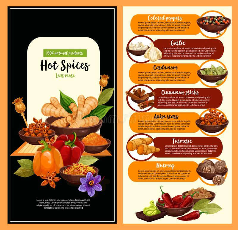 Spice shop banner with condiment and seasoning stock illustration