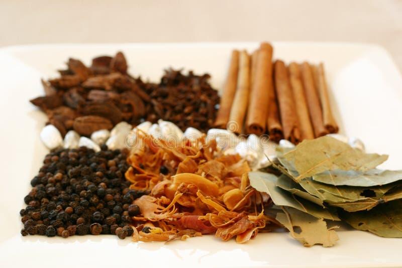 Spice Tray royalty free stock image