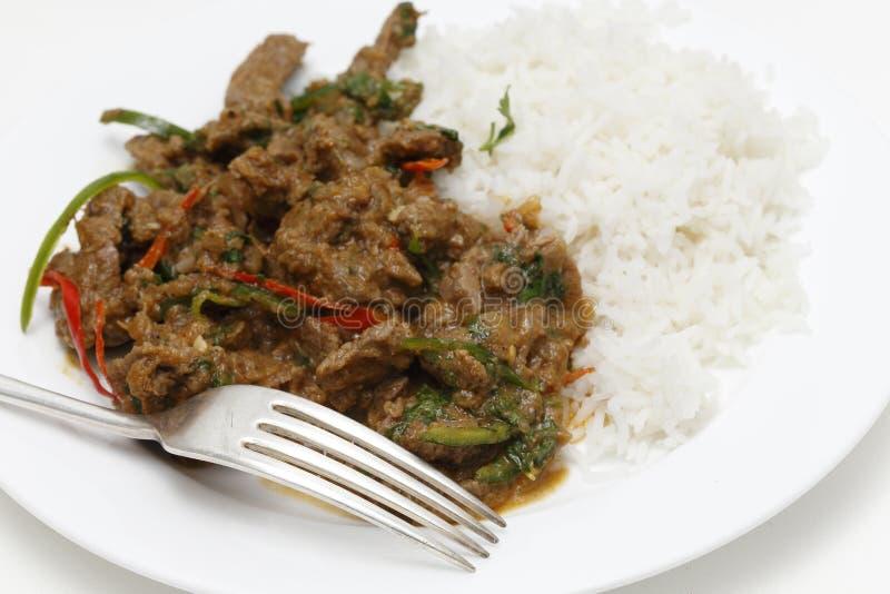 Spiced еда карри овечки с вилкой стоковое фото rf