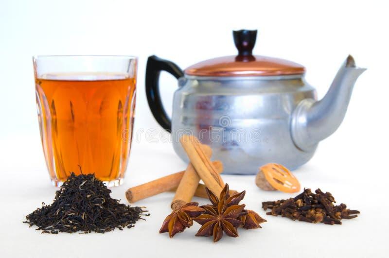 spiced herbaty. zdjęcie royalty free