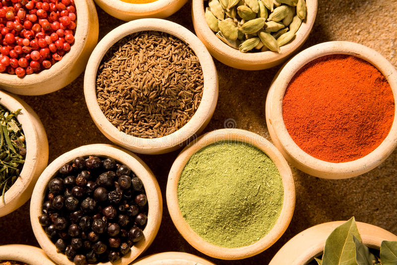 Download Spices stock photo. Image of curry, spice, biology, environment - 10721844