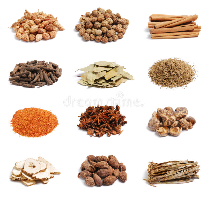 Spices. Dried spices on white background stock images