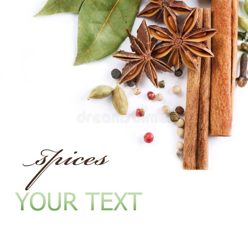 Download Spices stock image. Image of border, grain, caraway, dark - 15386227