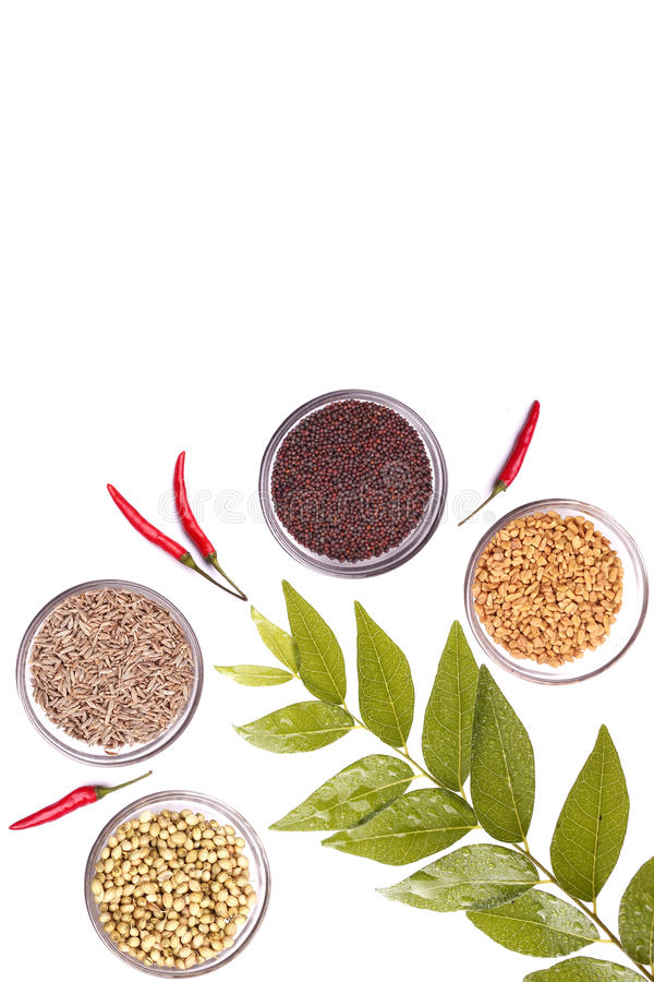 Free Spices Royalty Free Stock Photo - 20005975
